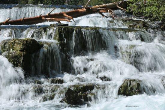 Meziadin Junction, แคนาดา: waterfall