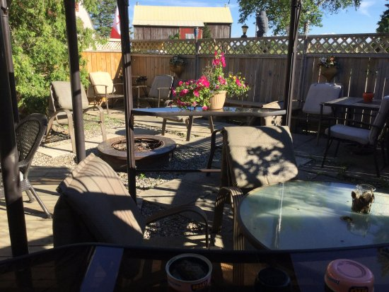 Village Inn Motel: This area is for our guests it is patio area plus gardens