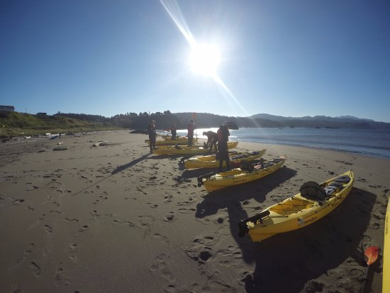 Gold Beach, OR: kayaks were all ready to go when we arrived in the morning