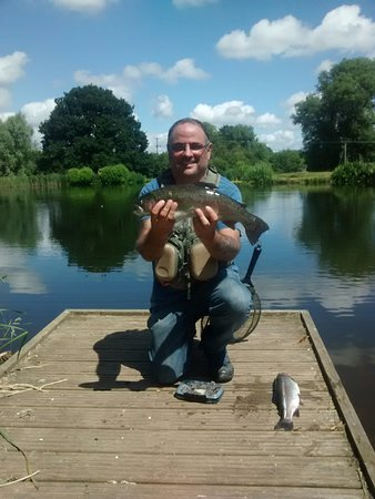 Bromyard, UK: 3lb plus fish in cracking condition !
