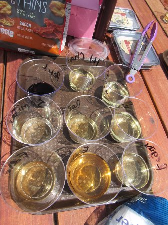 Peconic, NY: you can bring your tastings outside