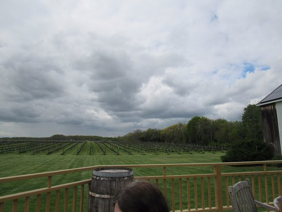 Paumanok Vineyards: Bucolic setting