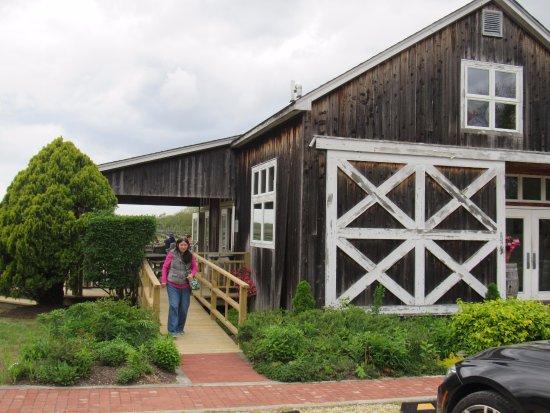 Aquebogue, NY: Entrance to Paumanok Vineyards