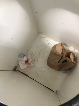 Muldraugh, KY: Trash thrown in container that didn't have a trash can