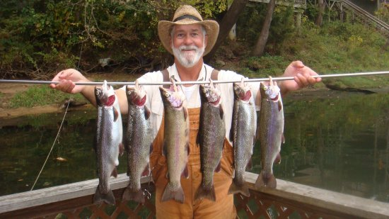 GENE'S TROUT FISHING RESORT - Updated 2019 Prices