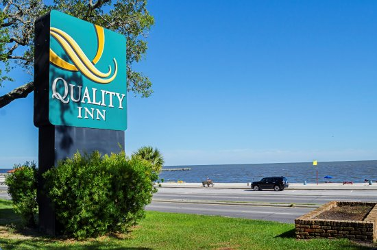 Quality Inn Biloxi: Our hotel is ACROSS from the Biloxi Beach and next to the MS Coast Coliseum & Convention Center