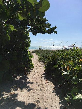 A Beach Retreat on Casey Key: photo3.jpg