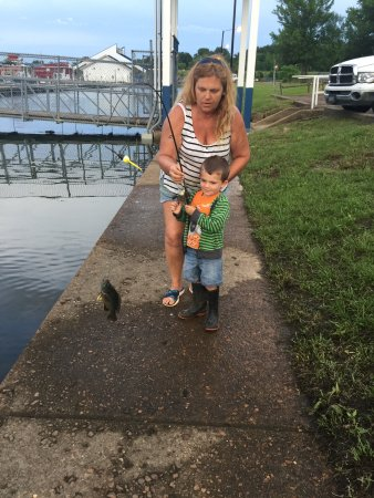 Buchanan, TN: fishing with Nanny at Paris Landing Marina