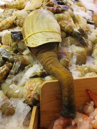 Pure food fish market pure food fish market for Pure food fish market