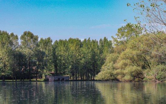 Il Mantova del Lago: Nei pressi del ristorante