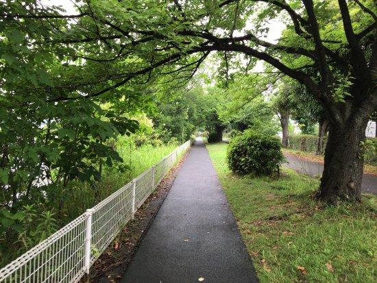 Kuki Shobu Park