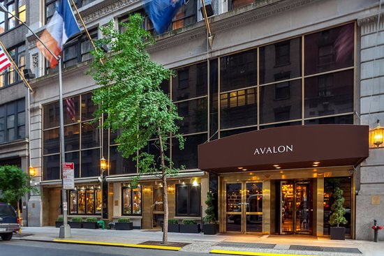 Avalon hotel updated 2018 prices reviews new york for Hotel centro new york