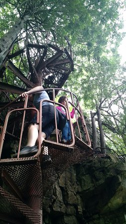 Lion's Head, Canadá: Rickety spiral staircase down to the water