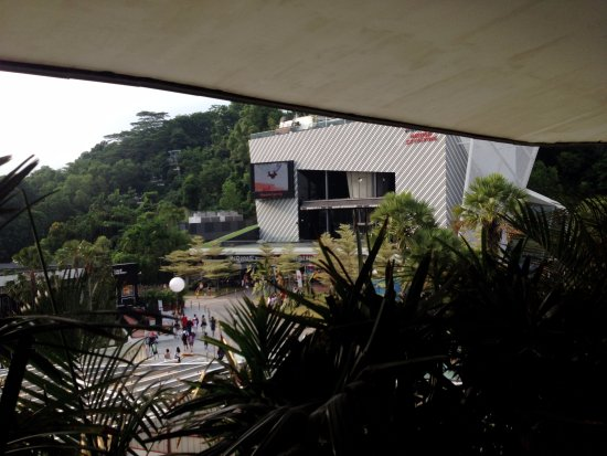 iFly Singapore #ondeestaocharlie