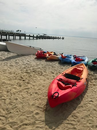 48th St. Watersports : Plenty of Kayaks