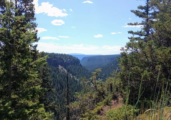 Chasm Provincial Park: View of Valley