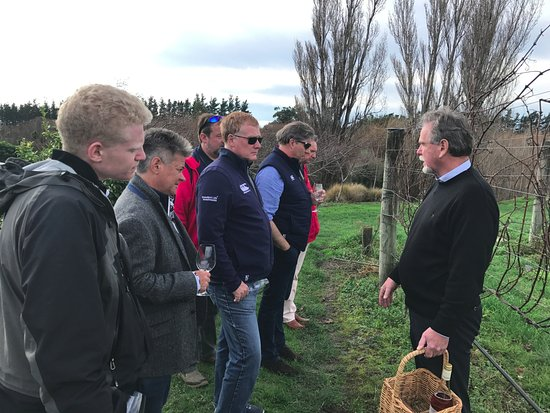 Martinborough, New Zealand: Guide Roger, explaining how grapevines are pruned to tour group