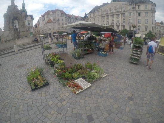 Brno, Tjekkiet: Locals are selling veggies and plants