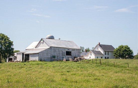 Grand Pre, Canada: Dairy Farm - Horton Point - Grand Pré