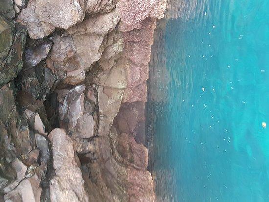 Kicker Rock: 20170628_121719_large.jpg