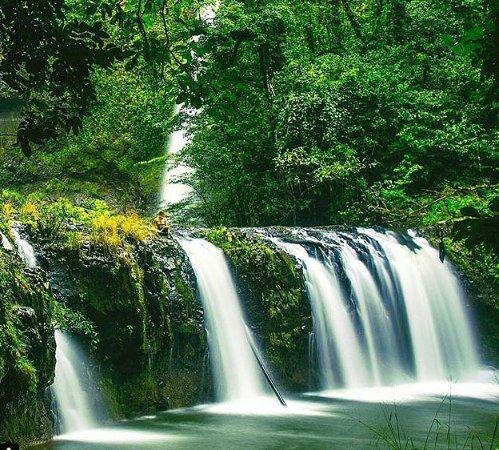 nandroya Falls-Milla Milla Atherton Tablelands