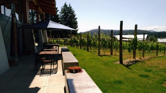 Blue Grouse Estate Winery and Vineyard: outdoor seating area