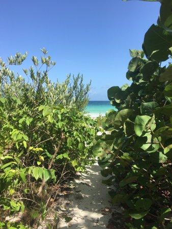 Secret Beach: photo1.jpg