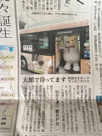 Odate Hachiko: photo5.jpg