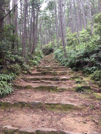 Kinki, Japan: É uma caminhada em um local bem rustico.