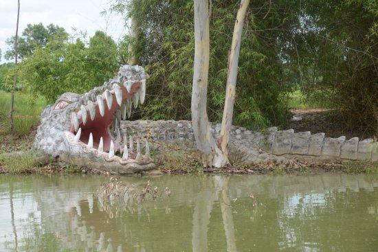 Thung Khao Luang, Thailand: crocodile sur l'étang