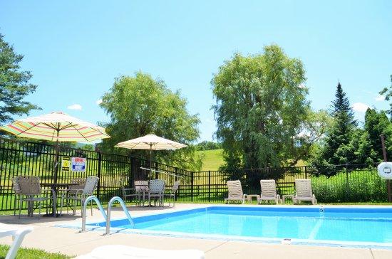 Pool - Picture of MAPLE TERRACE MOTEL, Williamstown - Tripadvisor