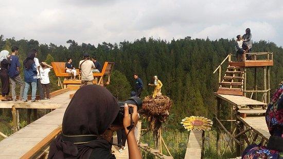 Top Selfie Pinusan
