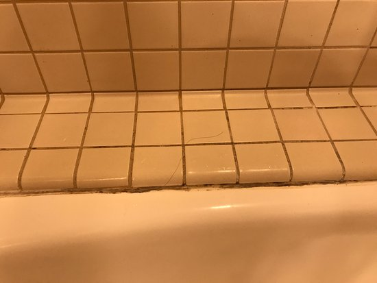 Blaine, WA: Upon check in the hair in the tub and under drinking cup that's missing coaster! Gross