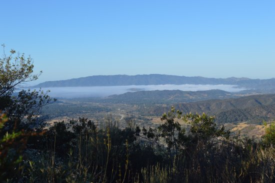 Ojai, CA: At the plateau - see the fog at 7 AM!
