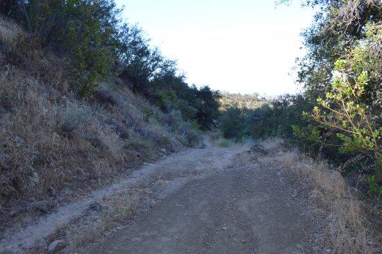 Ojai, CA: Cozy Dell road (west)