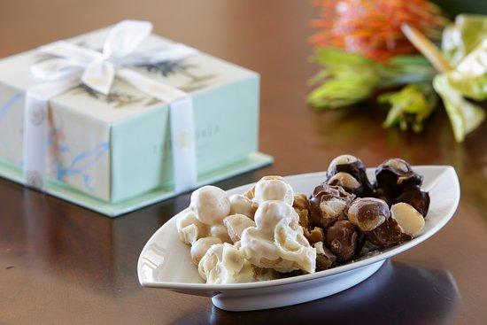The Kahala Hotel & Resort: Chocolate Covered macadamia nuts