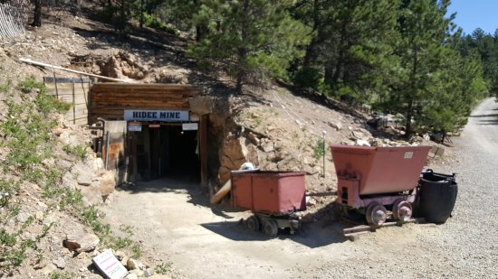 ‪Hidee Gold Mine‬