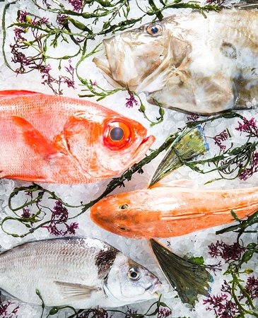 DB Bistro & Oyster Bar: New Zealand Fish Market - Offered Over the Weekend