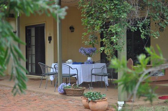 Ingleden Park: The verandah  overlooking farming and the garden, enjoy a BBQ, a coffee or a wine