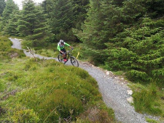 Dublin Ireland Bike Tours