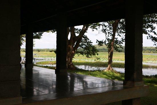 Habarana Village by Cinnamon: 20170610093353_IMG_3031_large.jpg