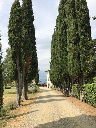 Villa Campestri Olive Oil Resort: photo0.jpg