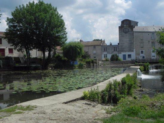 Parc Le Voucant