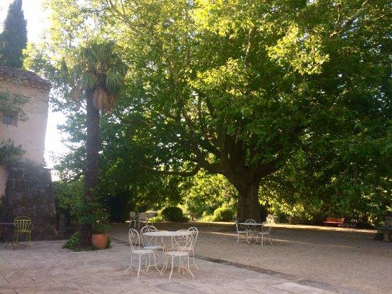 Solerieux, Frankrike: magnifique chêne devant la maison
