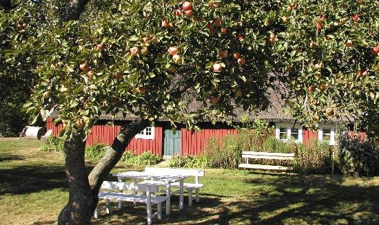 Elfdalens Hembygdsby