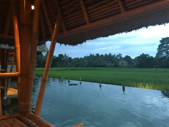 A Beautiful place to visit while in Ubud
