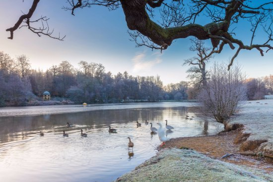 Midhurst, UK: Benbow Pond