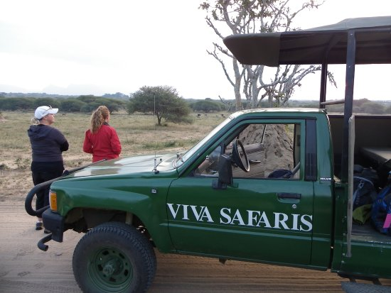 Tremisana Game Lodge: viva safaris