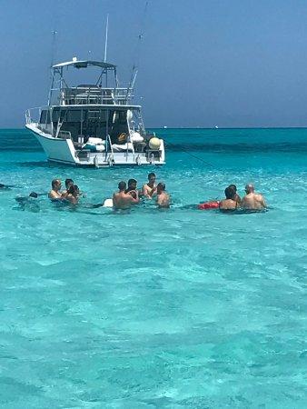 Seven Seas Charters Day Tours : photo0.jpg