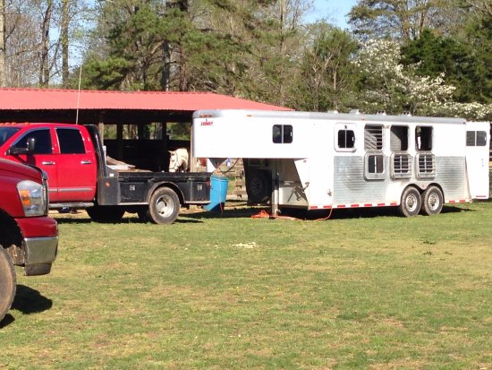 Jamestown, TN: Campsites within paddocks, with water and electric at each of 8 barns, turnout available.